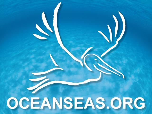 OCEANSEAS.ORG
